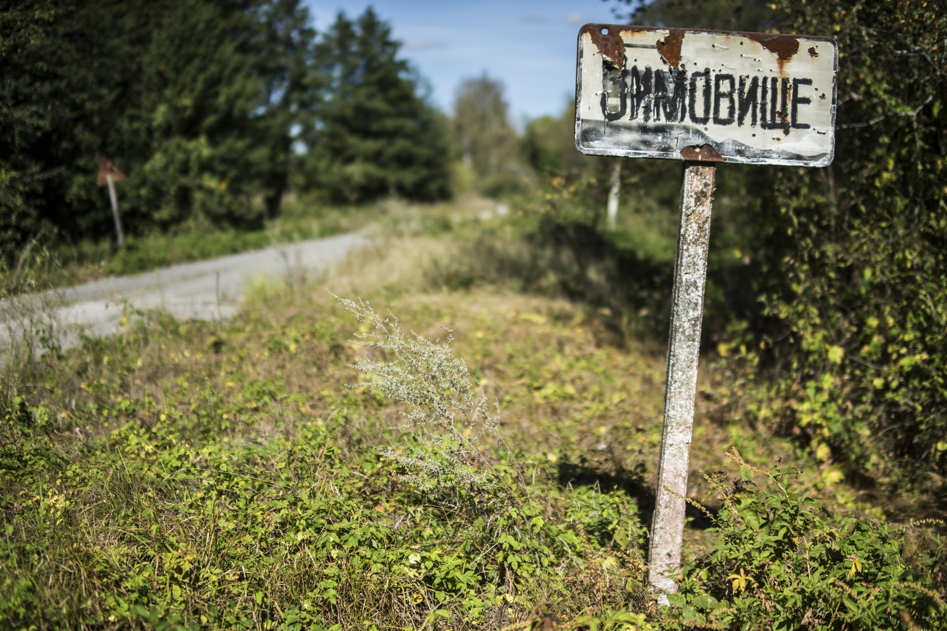 The exclusion zone's villages and towns were evacuated and have laid empty ever since.
