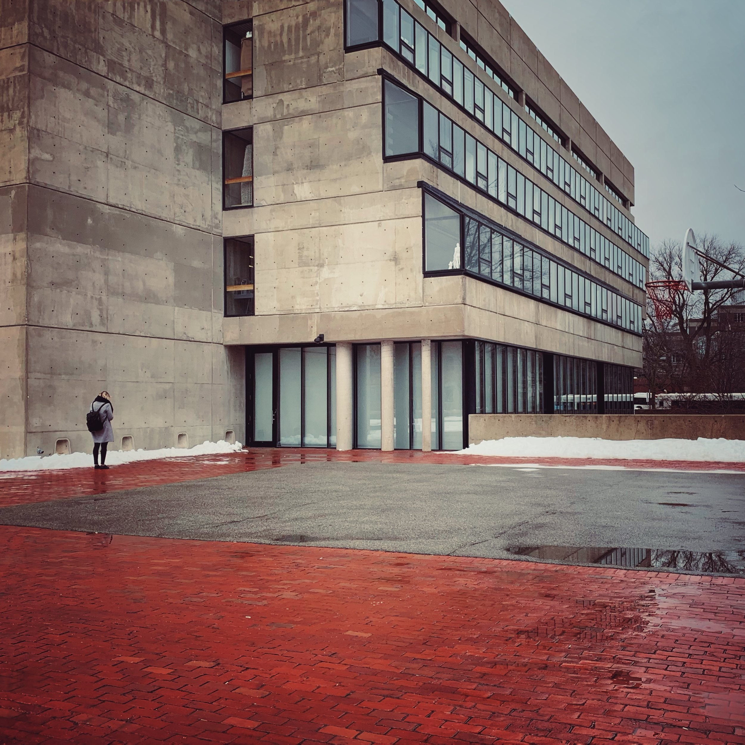 Harvard's Graduate School of Design