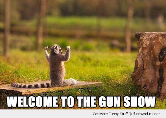 gunshow1864.jpg