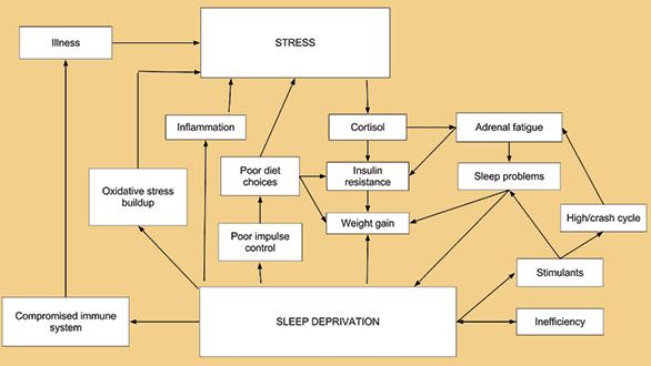 stress1864.jpg