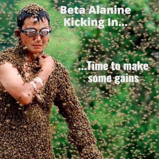 beta alanine-crossfit.png