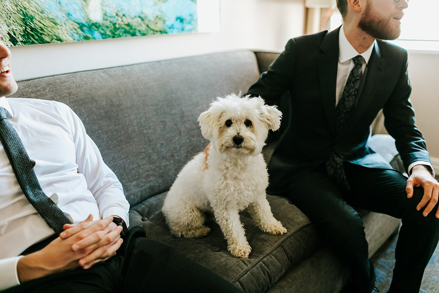 Groom with dog at hotel palomar