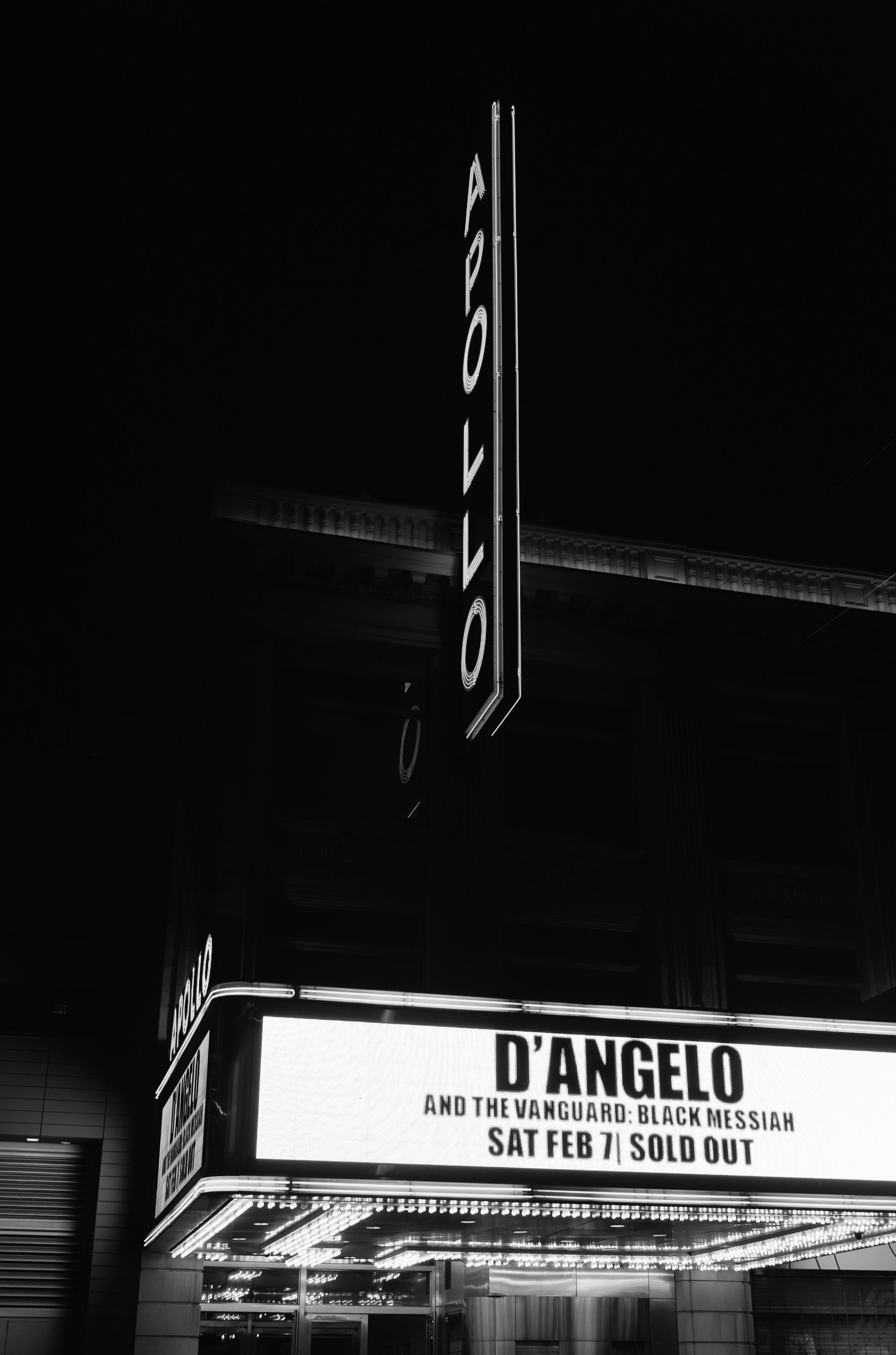 D Angelo at the Apollo-D Angelo-0011.jpg