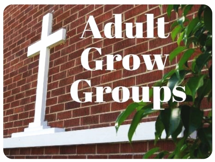 Weekly Grow Groups: - GROW Groups are gatherings where all are welcome to study, pray, ask questions and share life's joys and challenges in order to be formed into more deeply committed disciples of Jesus. These are groups of various sizes and can be on-going, long-term or short-termSunday Mornings at 9:00am:     Joy Class - Meets in the Joy RoomThe Joy Class is continuing a study on prayer. Questions? Contact the church office for more information.     Faith Class - Meets in the Faith RoomThe Faith Class engages in a chapter-by-chapter, in-depth Bible study.Questions? Contact the church office for more information.     Friendship Class - Meets in the ParlorQuestions? Contact Delores at 352-357-2330