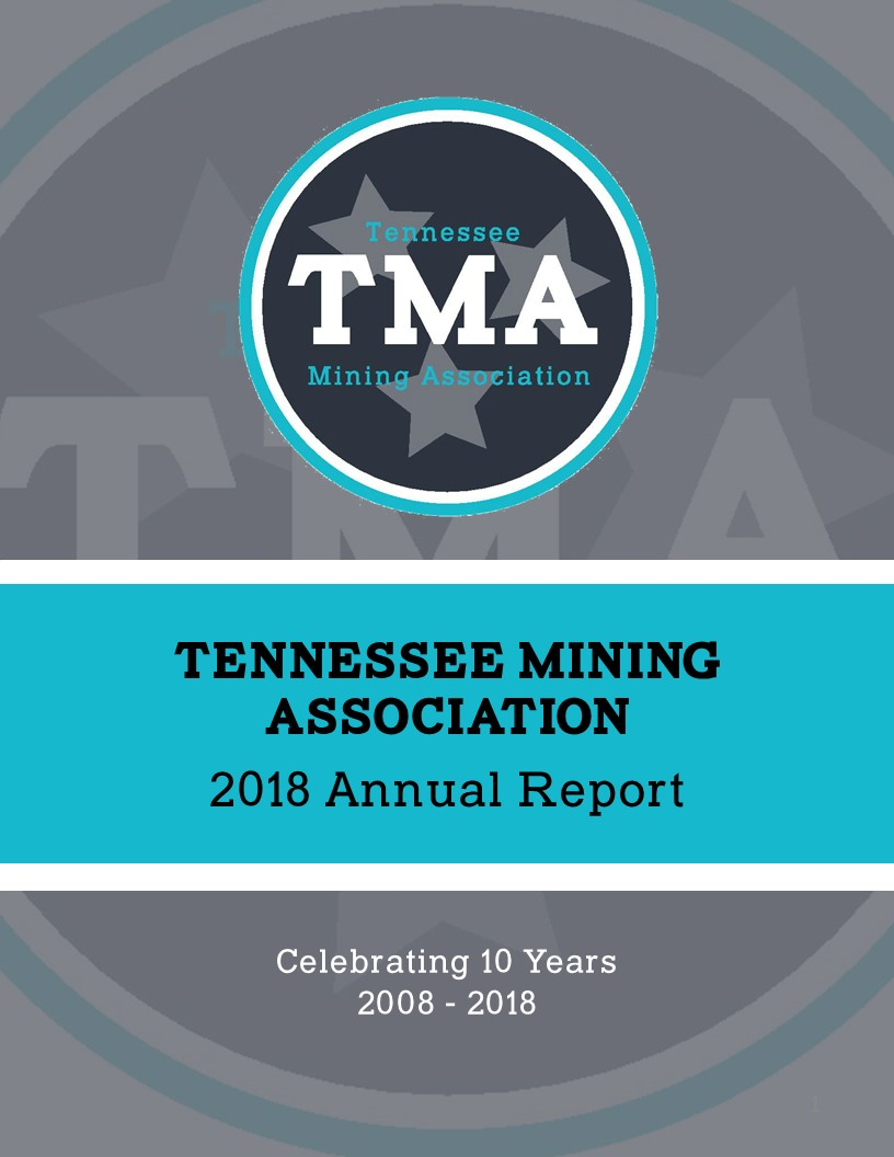 TMA 2018 Annual Report - Highlights of the Association's activities