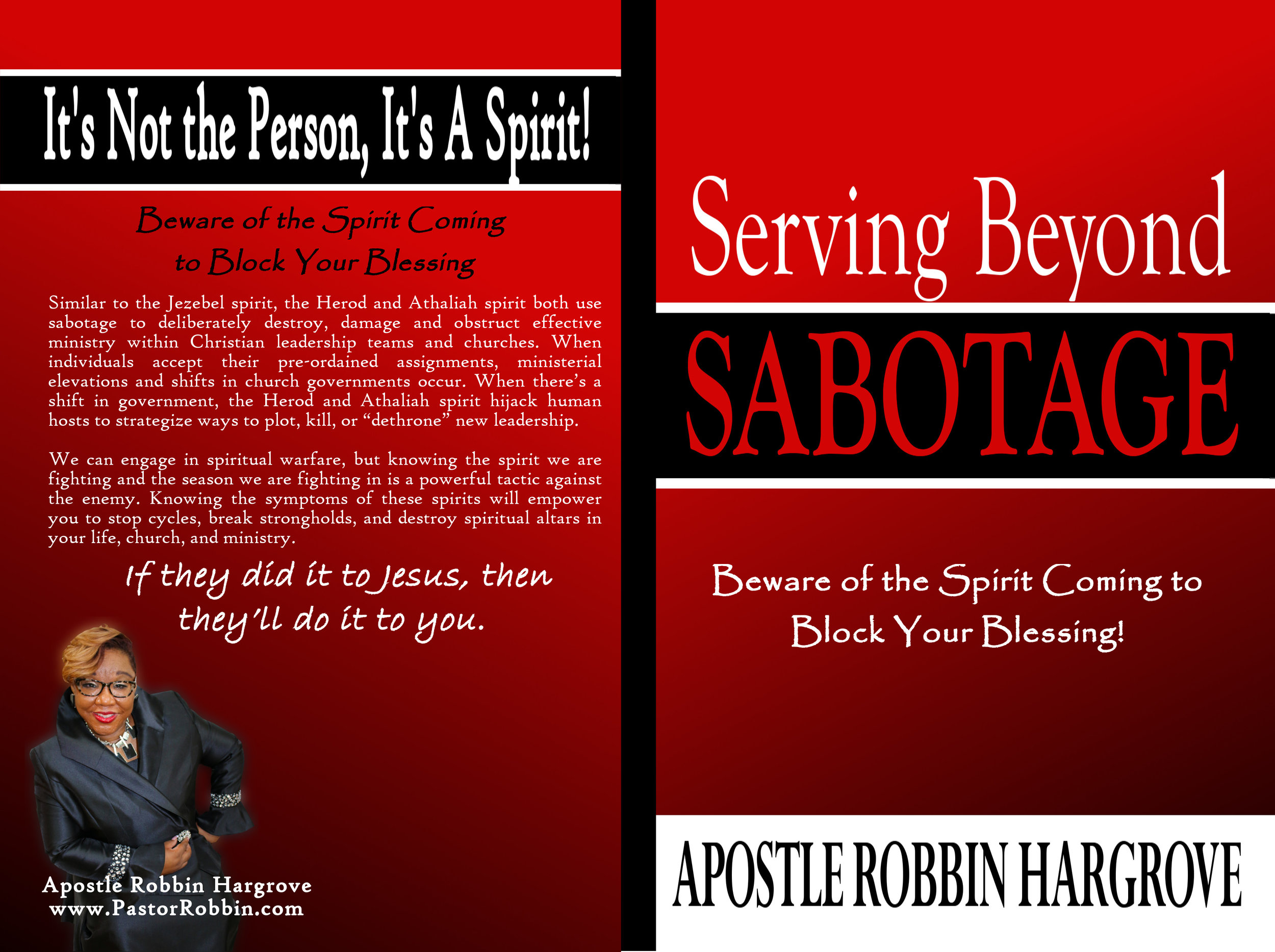 SBS book cover.jpg