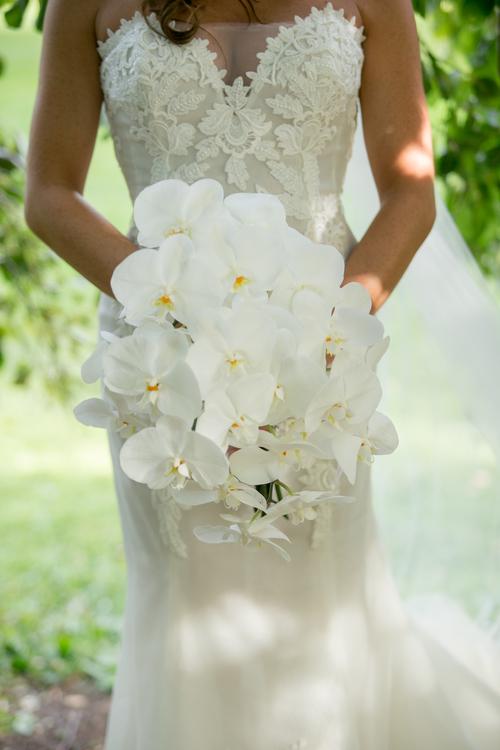 Elegant Bliss Wedding Photography