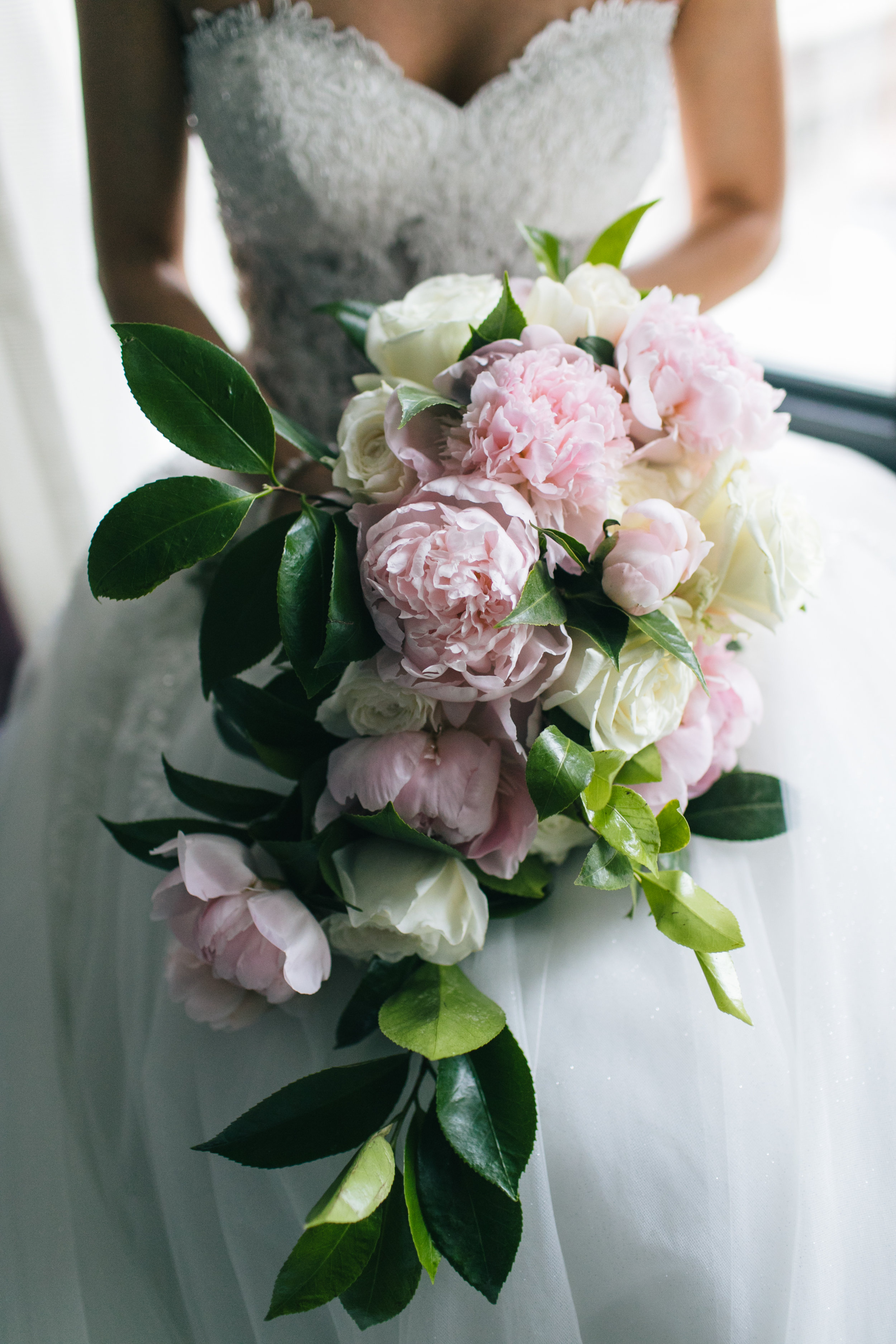 A gorgeous cascading bridal bouquet with Pink Peonies, Ivory Garden Roses, and rich Greens.  (Zev Fisher Photography)