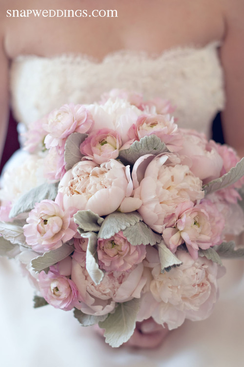 This lush bridal bouquet is petal-rich with gorgeous blossoms. Pink Ranunculus & Peonies are a lovely compliment to cool-toned Dusty Miller.  (Snap! Photography)