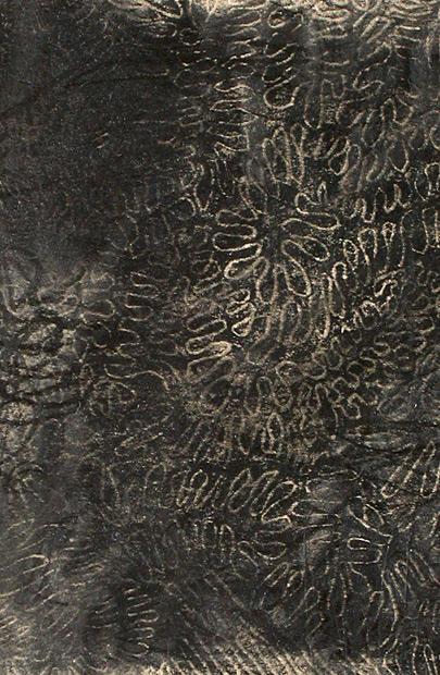 Untitled, (knot like)
