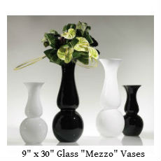 Black and White Mezzo vases text.jpg