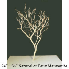 Manzanita branch text.jpg