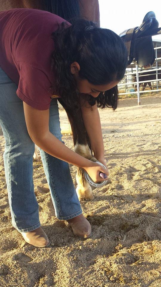 esmeralda picking hooves.jpg