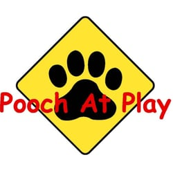 pooch at play.jpg