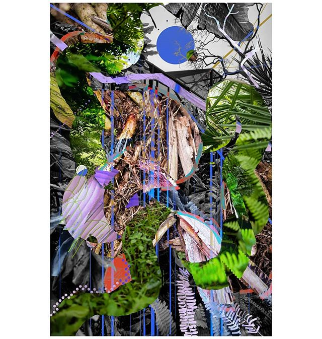 Old garden by the pool, bush in the front yard, a path under the brush. . . . . . #collage #digital #digitalart #digitalpainting #digitalcollage #digitalartist #photography #photocollage #photo #photoshop #photographer #photos #naturephotography #art #artist #artwork #contemporaryphotography #contemporaryart #contemporarycollage #landscape #abstractphotography #abstractlandscape #abstractart #texture #textures #textureart