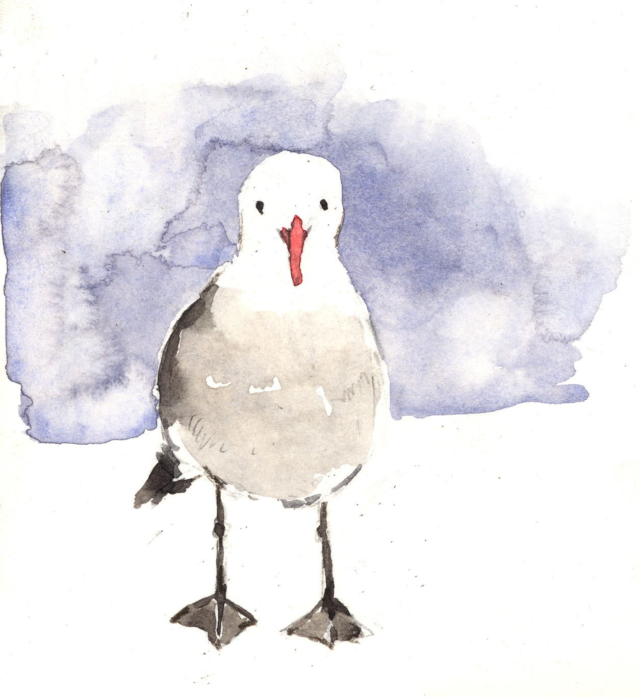 bird sketching 3.jpg