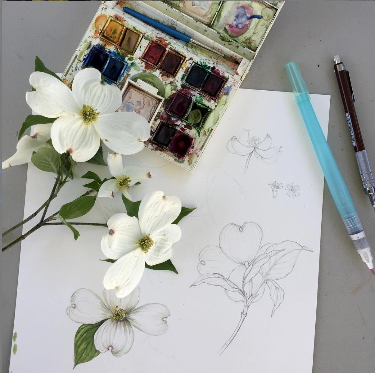 erin_botanical.jpg