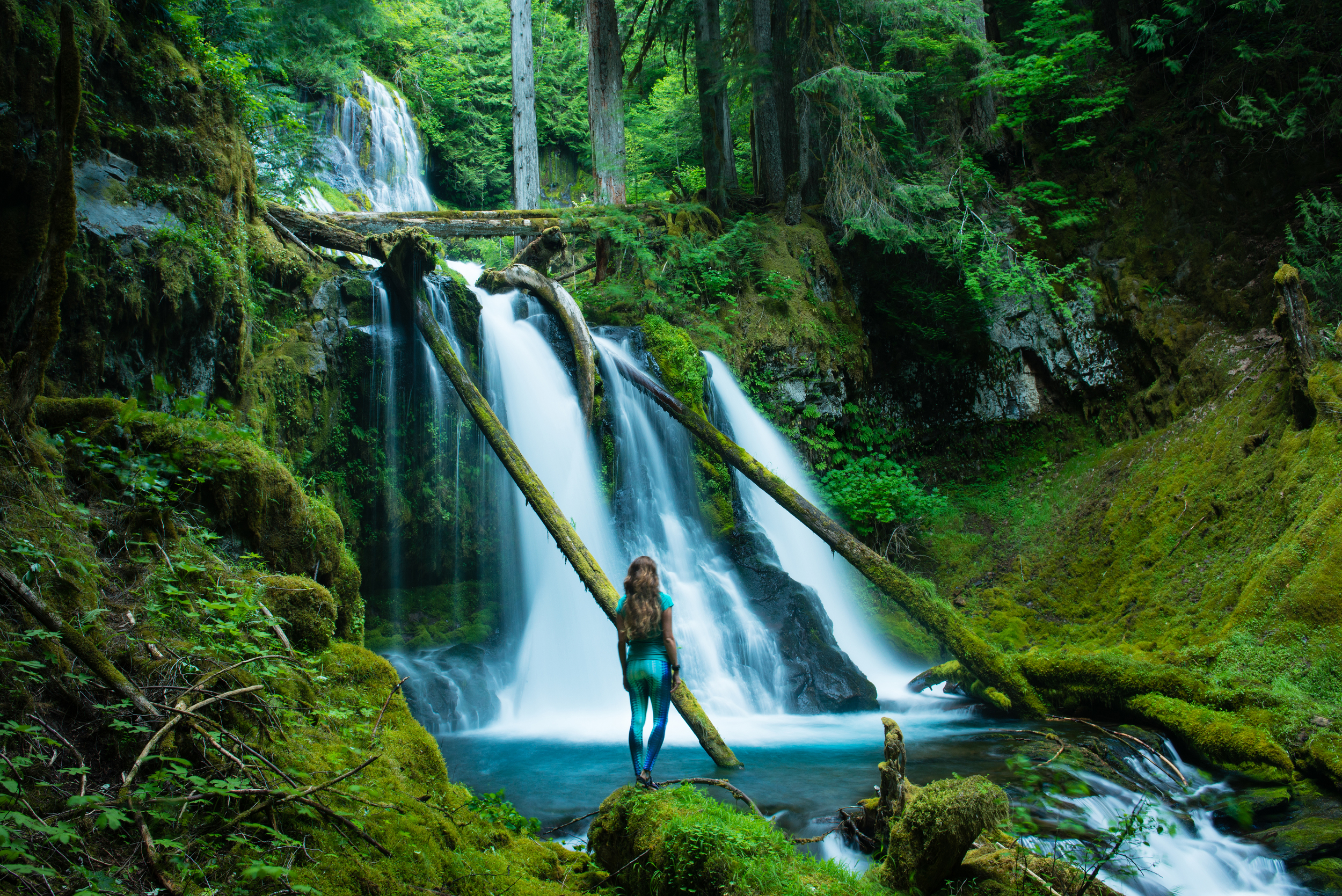 Finding serenity deep in the forest of Washington