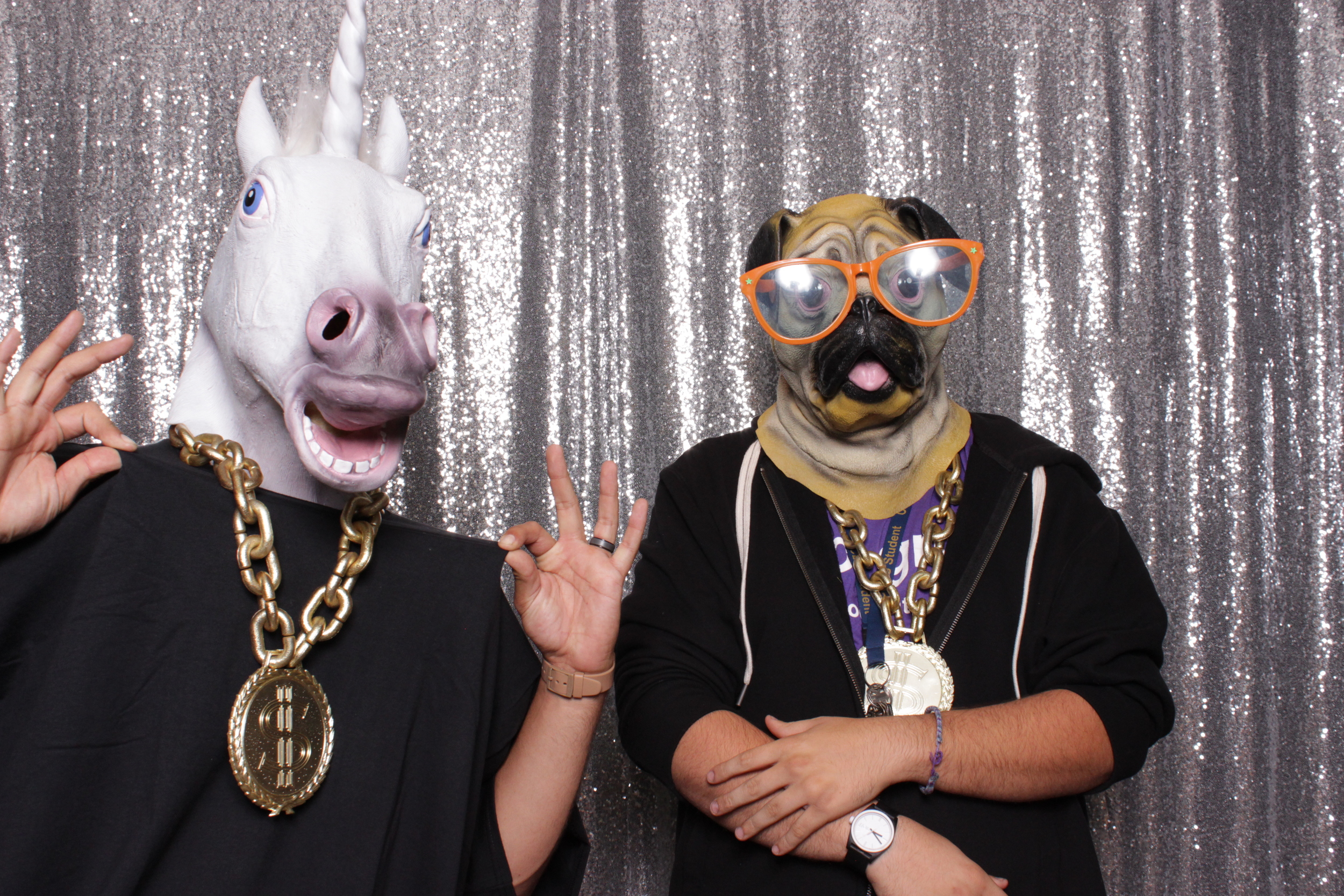A thug pug and ganstacorn! The silver sequins backdrop really adds to the bling bling of this shot.