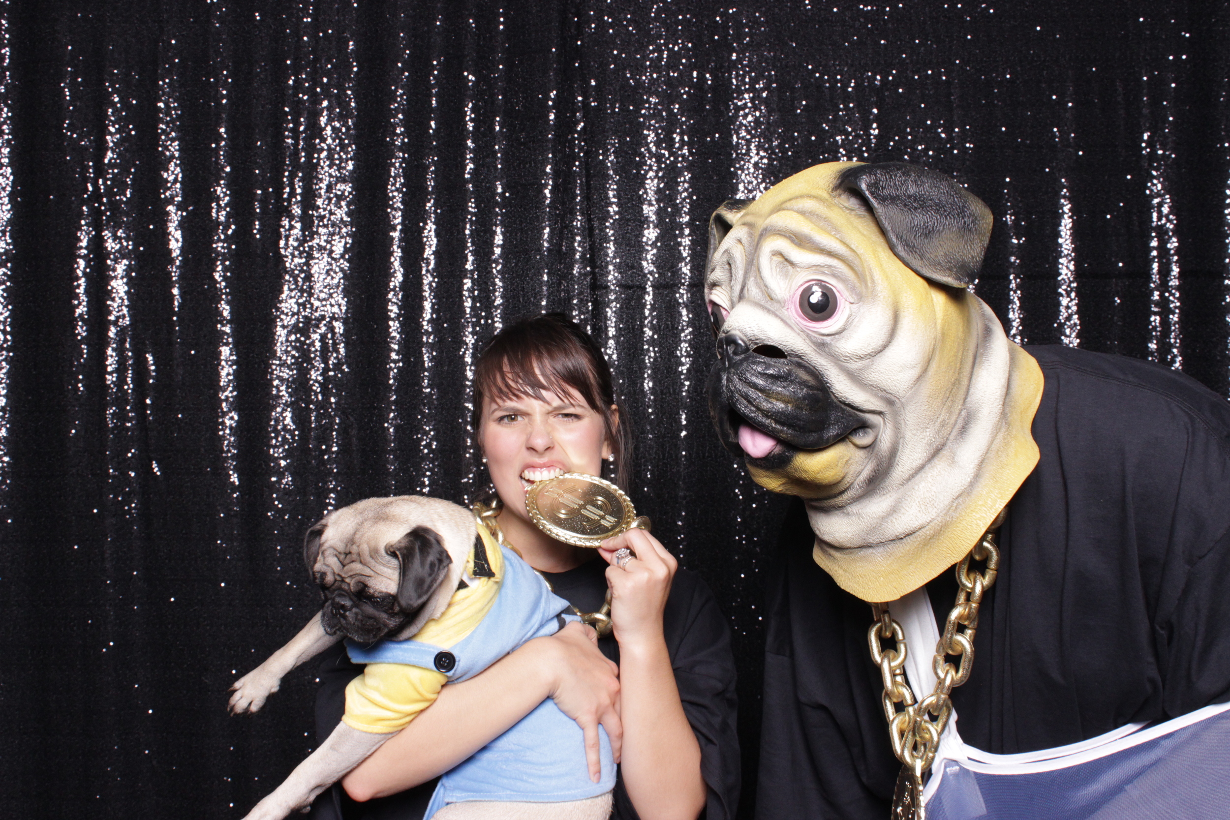 Real pugs and want to be pugs :D
