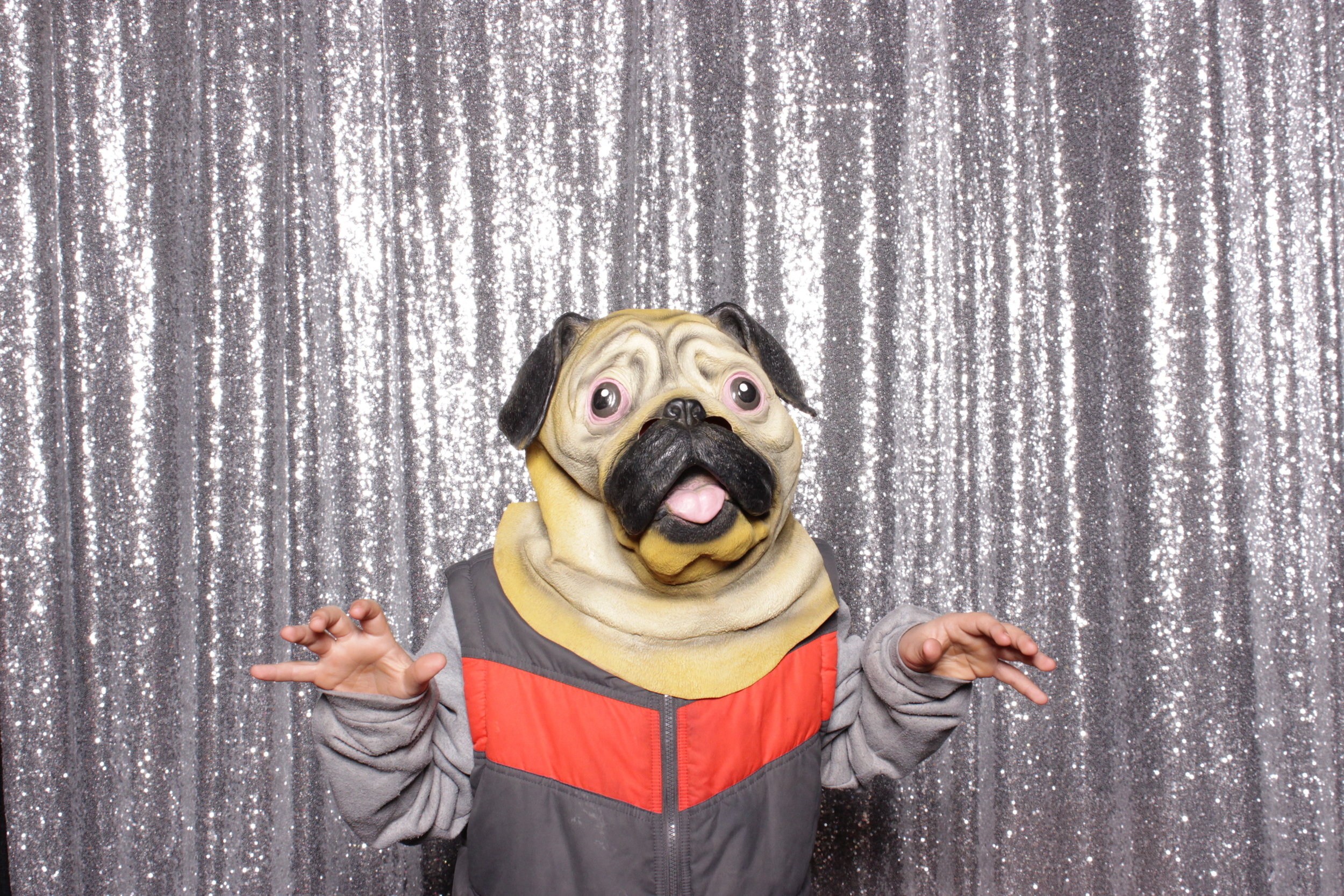 chico-bridal-show-photo-booth-pug