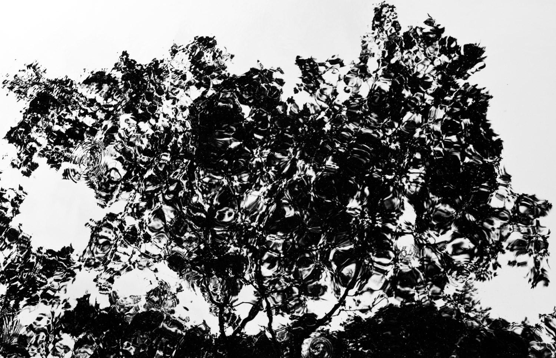 Trel_Brock_Tree on Acid.jpg