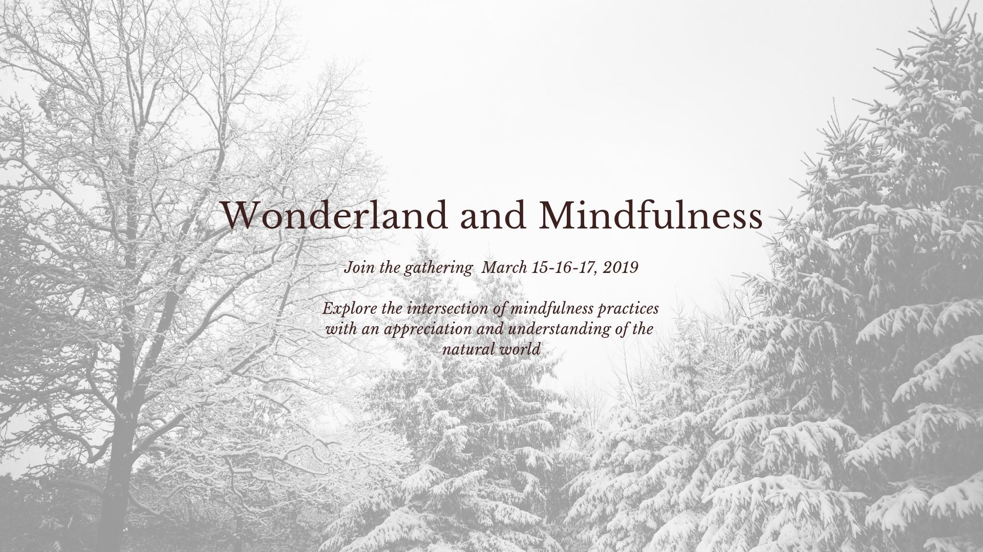 Wonderland And Mindfulness Ottawa Yoga Therapies With Jo Ann D Alfonso