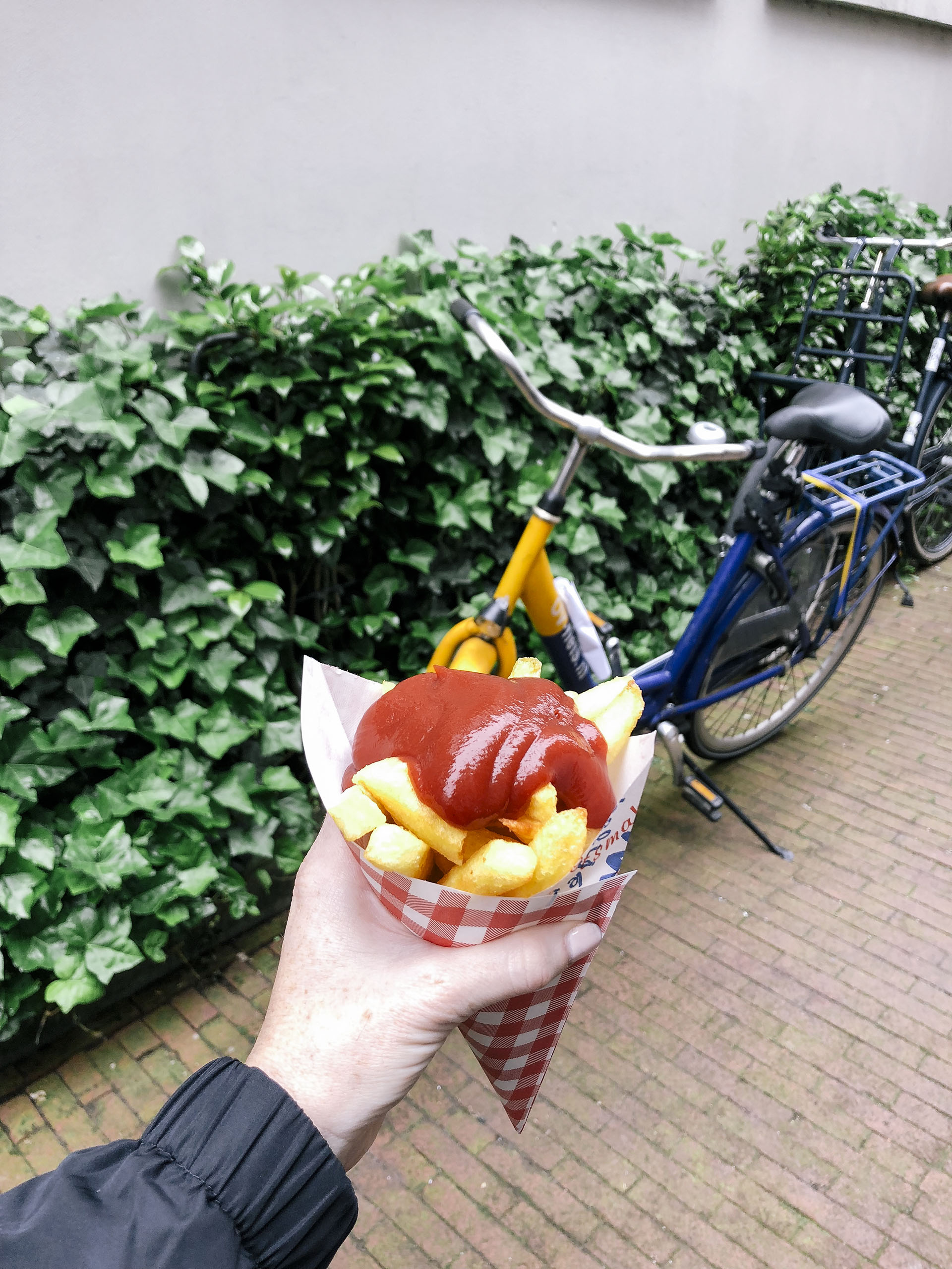 Fries from Vlaams Friteshuis Vleminckx