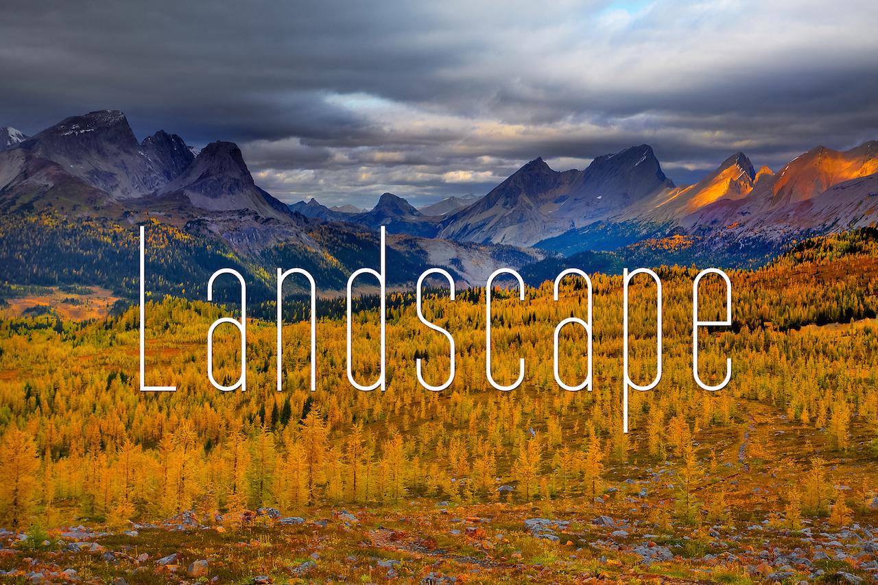 Landscape_W.jpg