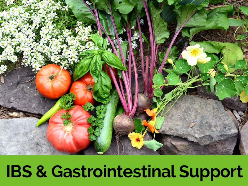 IBS & Gastrointestinal Support.jpg
