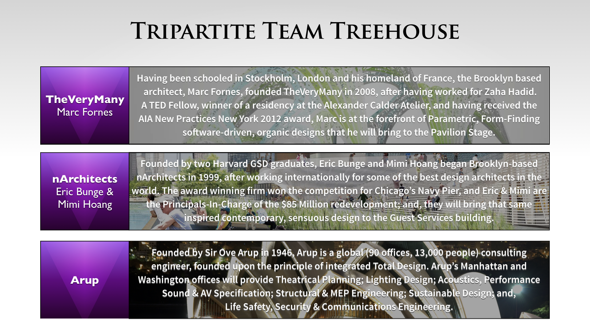 Treehouse Amphitheater Desing Team Selection copy.024.png