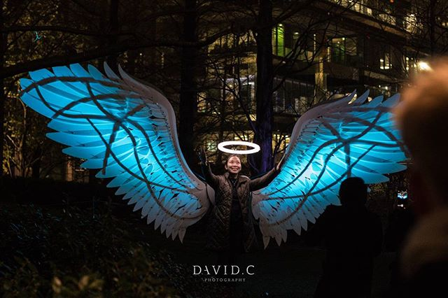 Its your last day to see the  Winter Lights with the lights installations and interactive art.  #art #light #lastnight #canarywharf #winterlights #photography #davidcphotography_uk #jubilee #park