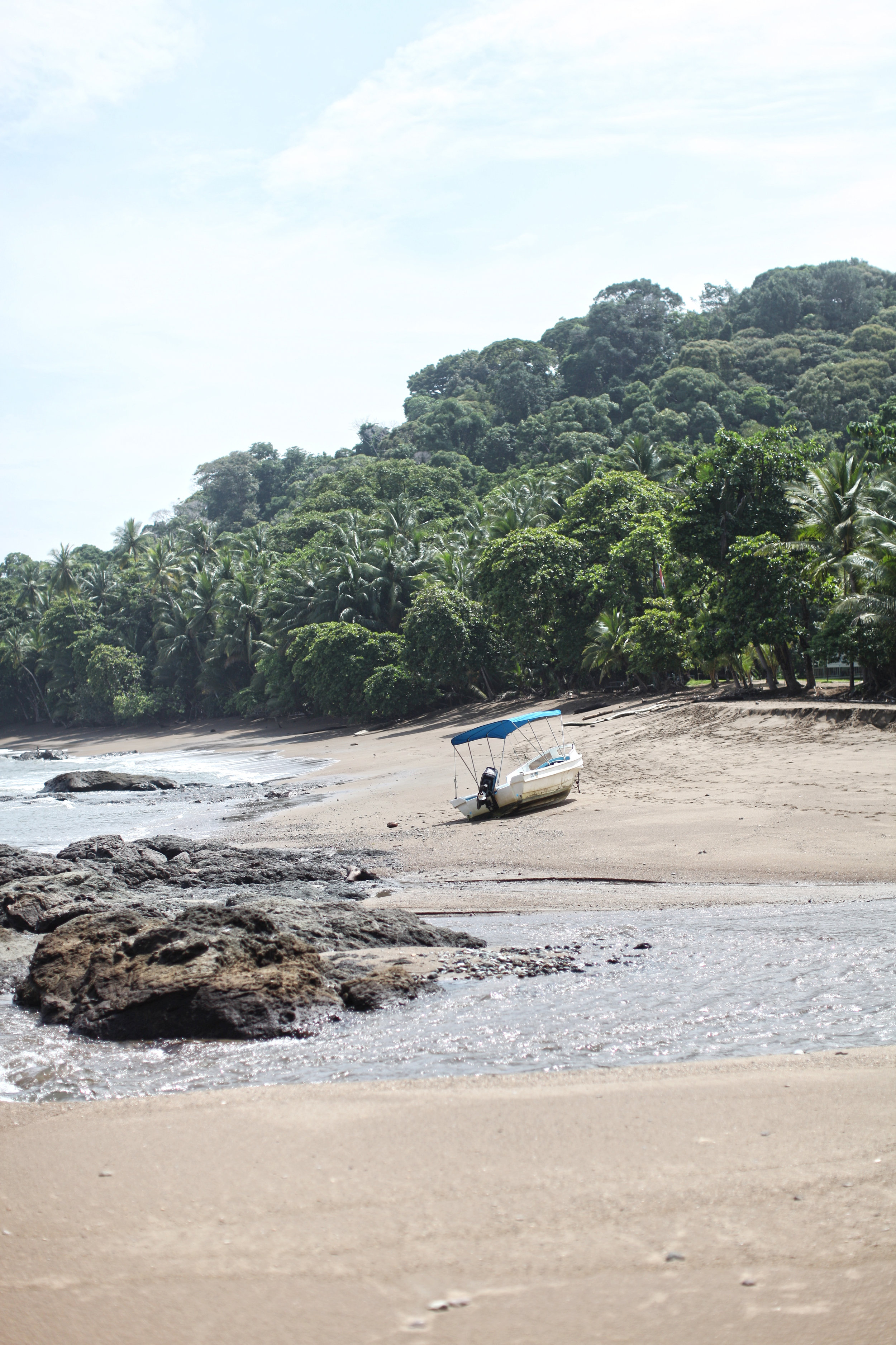DAY 4 : - CORCOVADO - If you are looking for wildlife visiting Corcovado is an absolute must! This island is completely untouched and it's beauty is indescribable. As soon as we touched land the captain was warning us to stay clear from the lagoon because that is the crocodiles sunbathing spot....this was extremely hard to do because the lagoon was soo beautiful and the water so clear!!