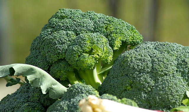 Detoxifying Foods | Lean and Green Body Blog