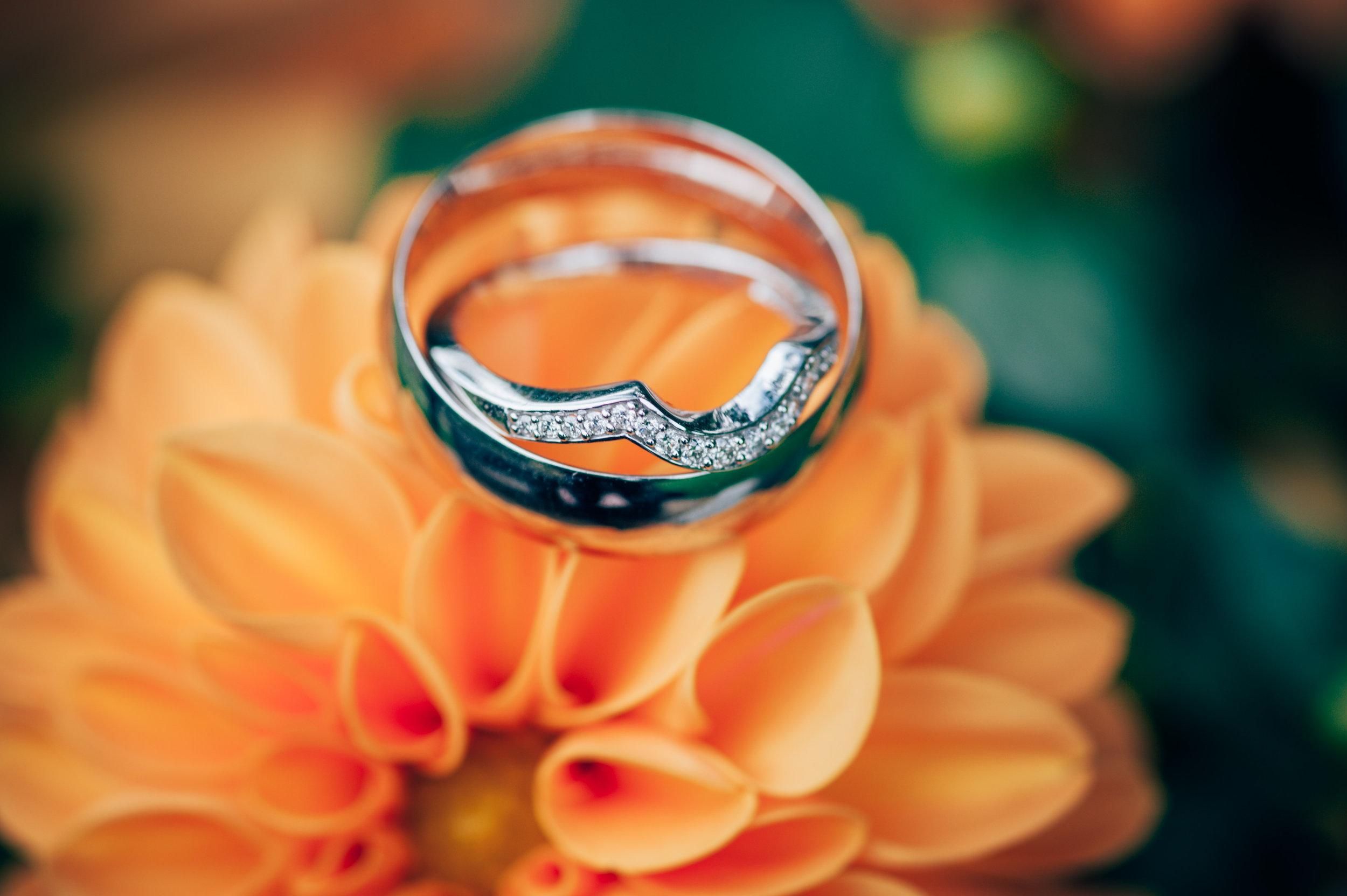 Wedding Rings on orange flower
