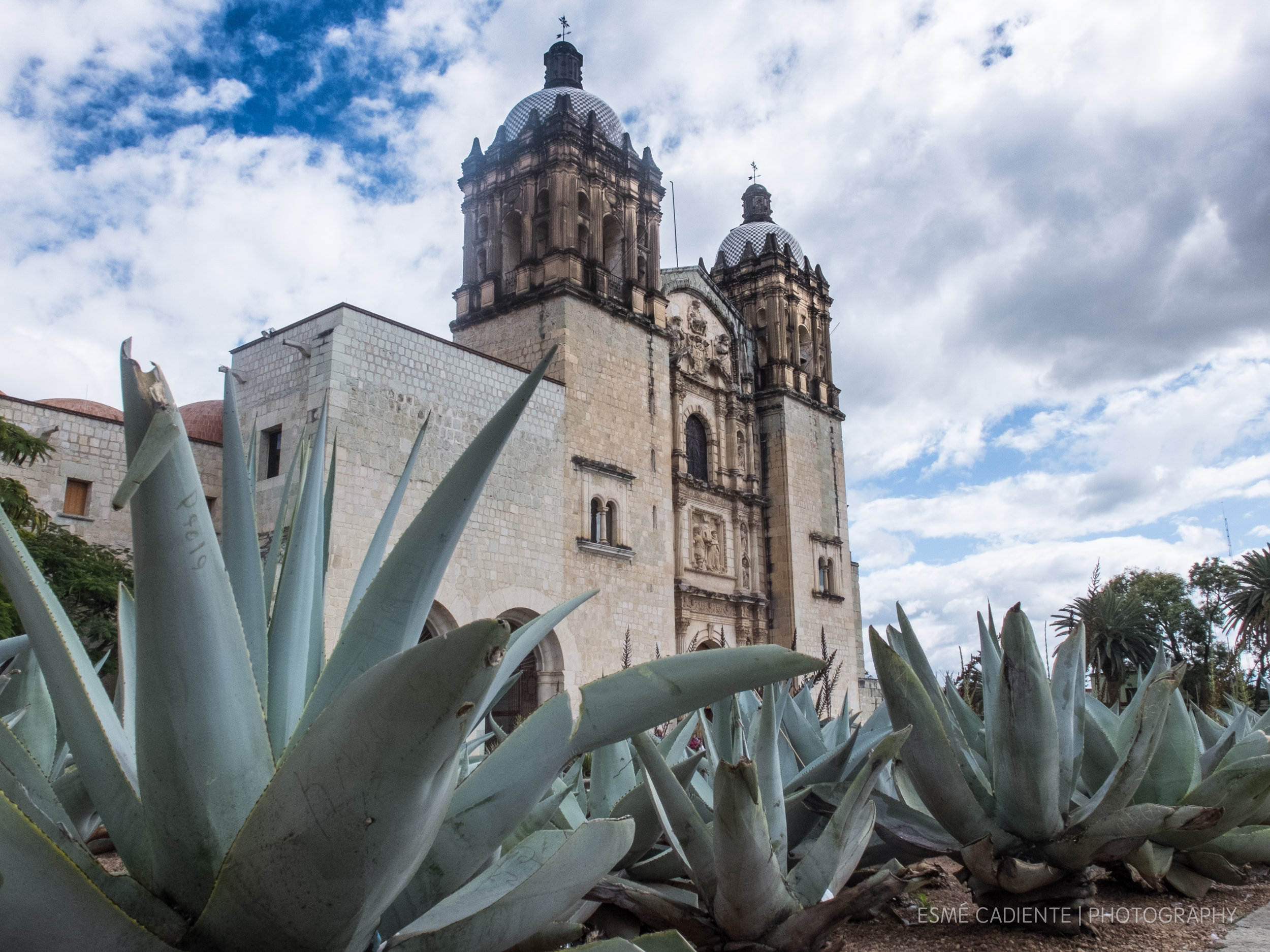 13Feb_Oaxaca1_367.jpg