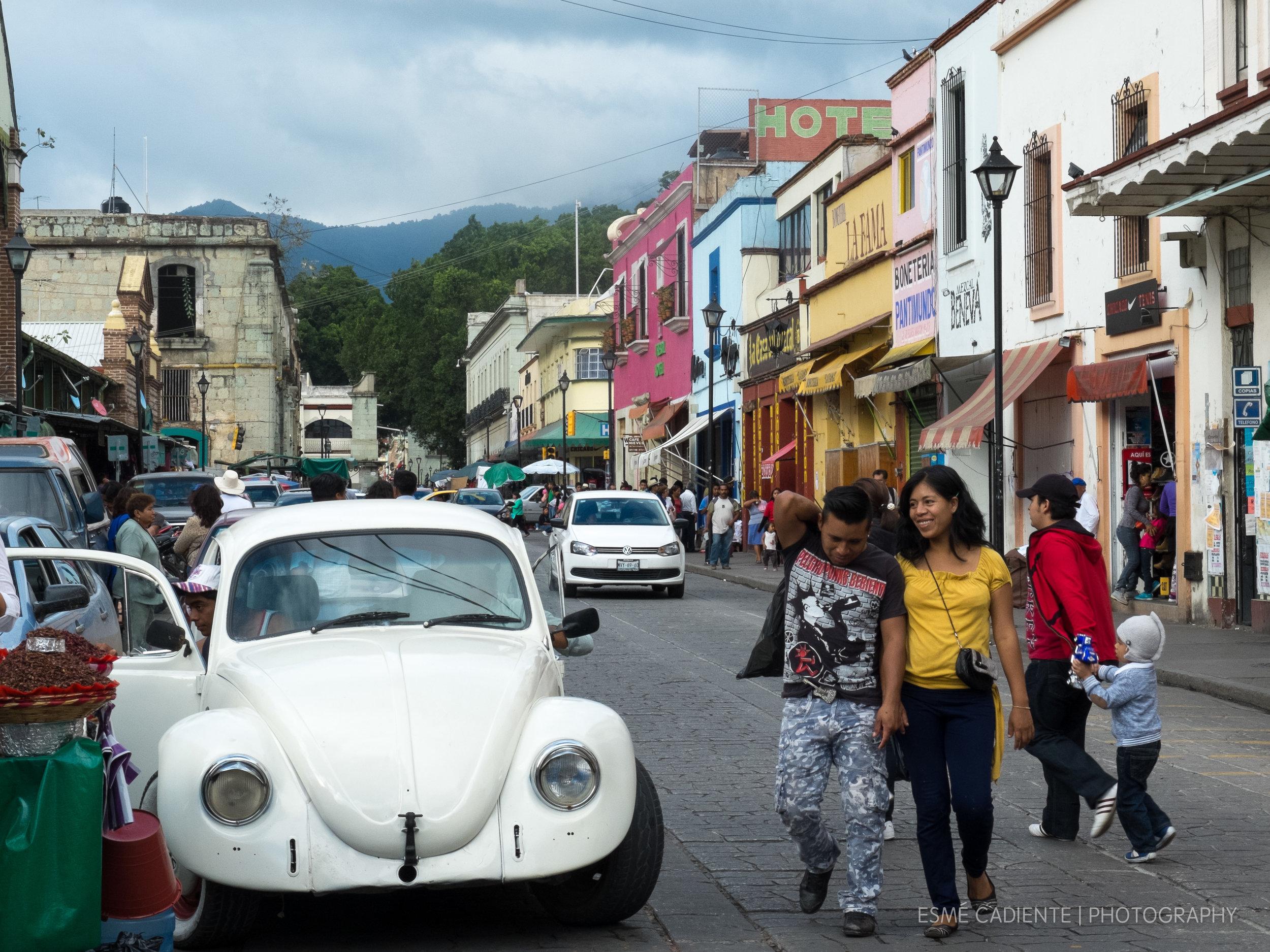 13Feb_Oaxaca1_404.jpg