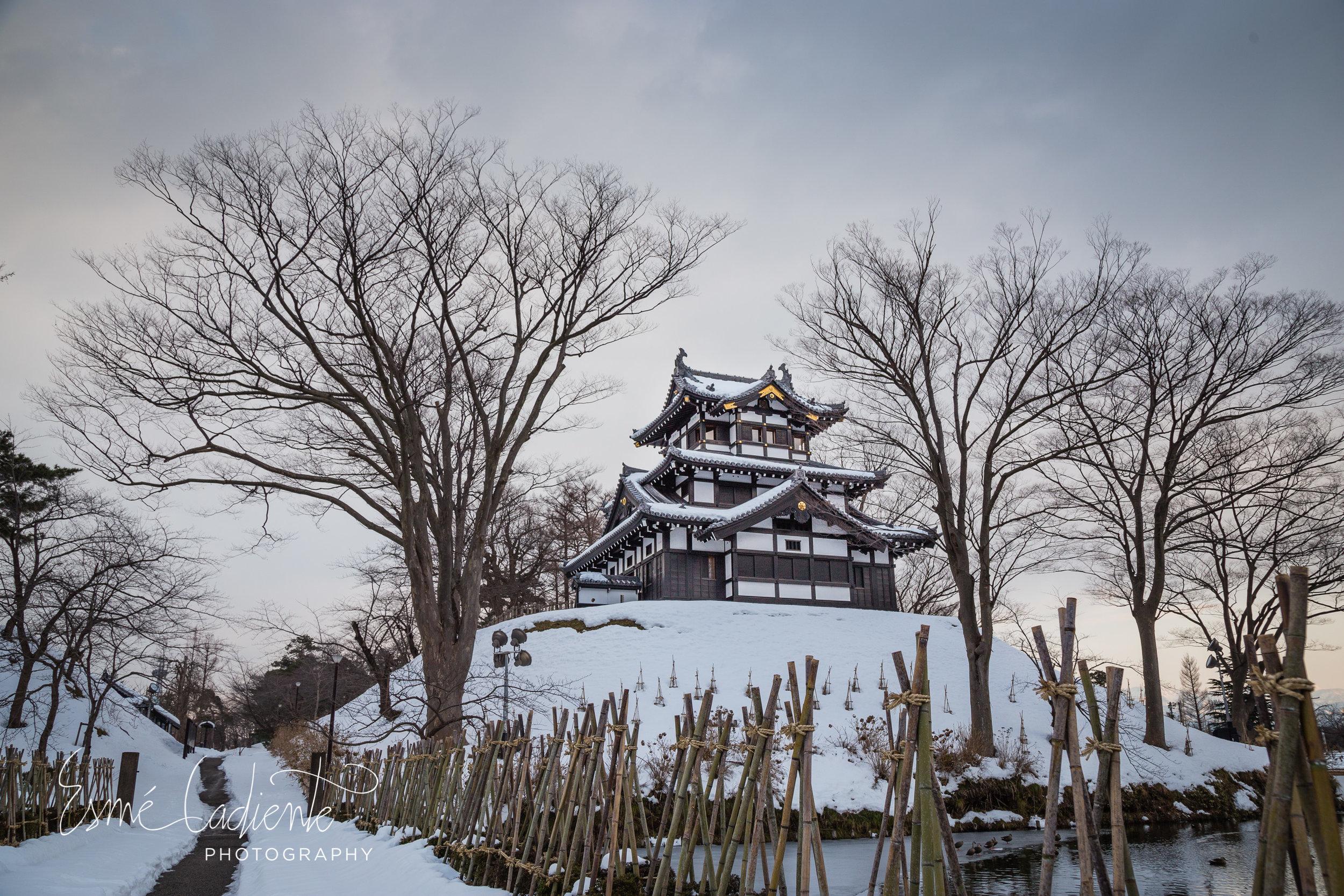 17Jan_Japan_423-2.jpg