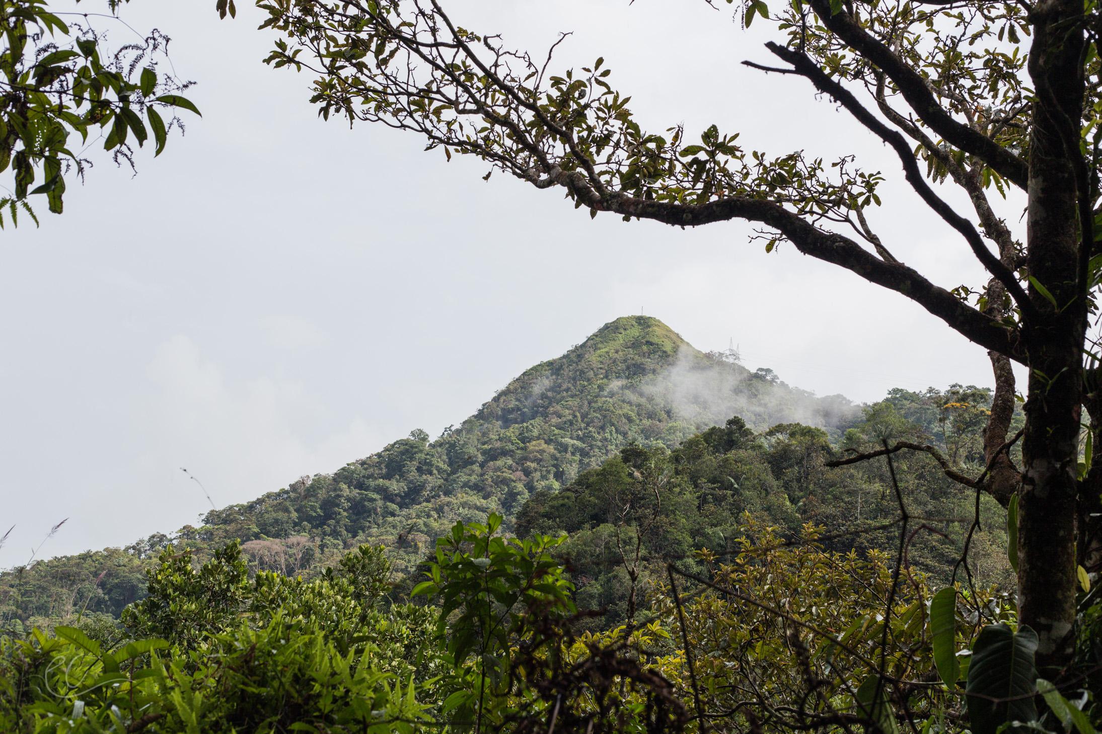 Colombia-264.jpg