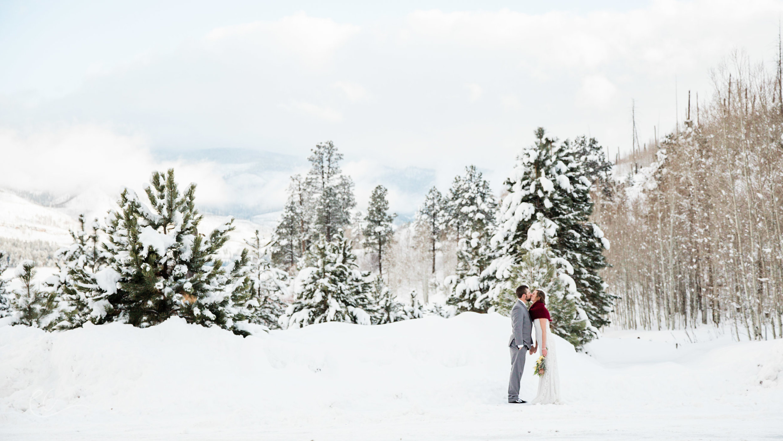 Vallecito_colorado_wedding-38.jpg