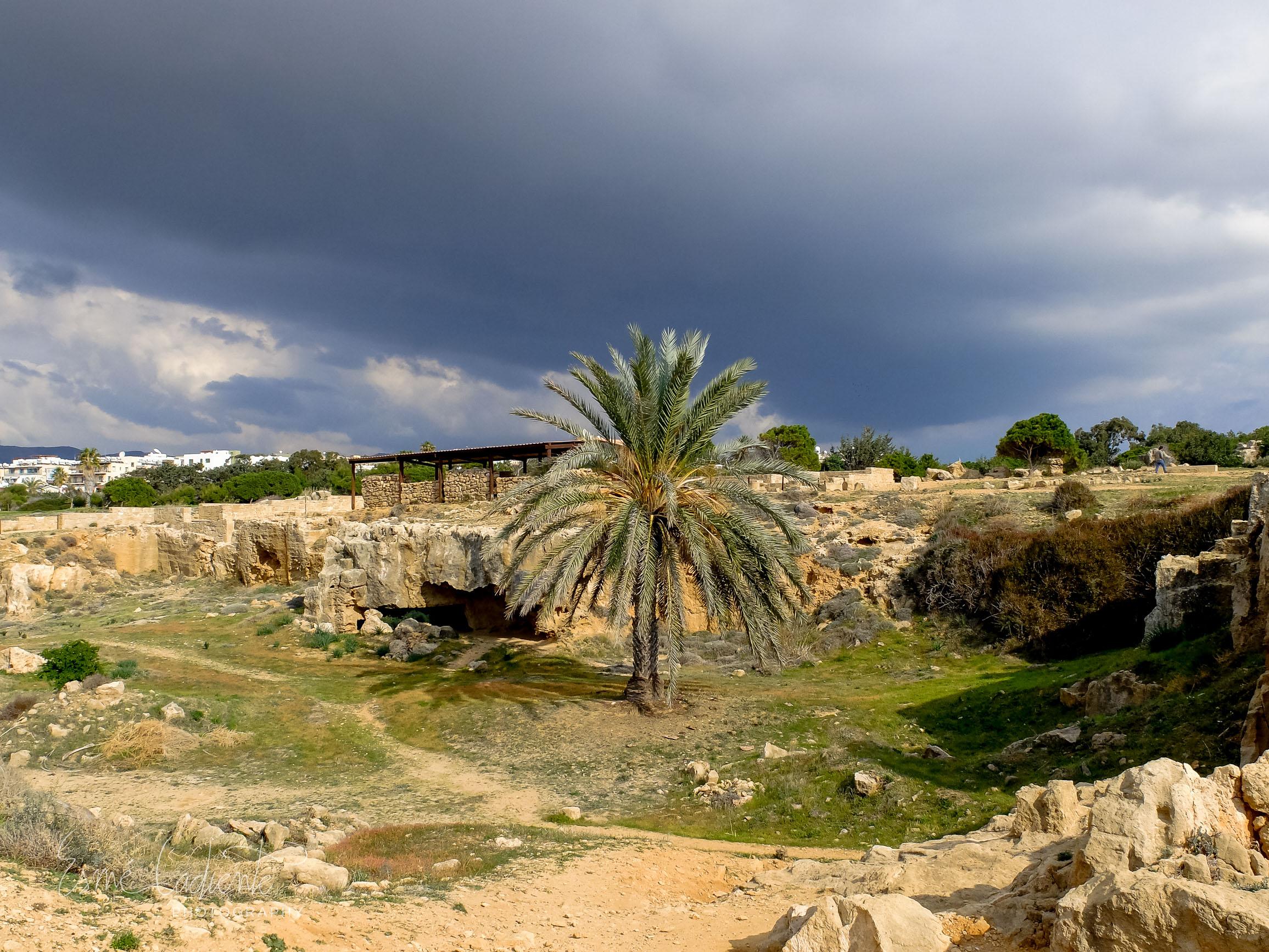 2014_Cyprus-100.jpg