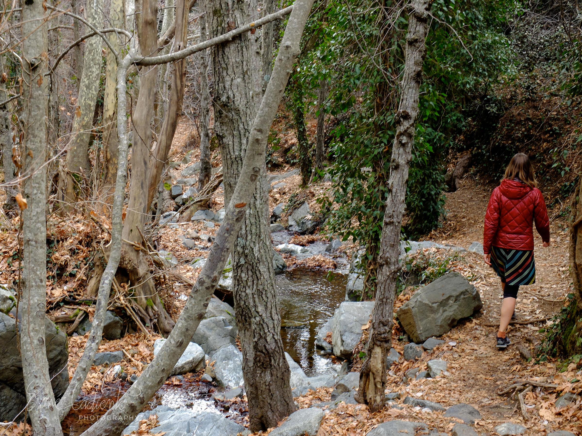 Hiking around Mt. Olympus
