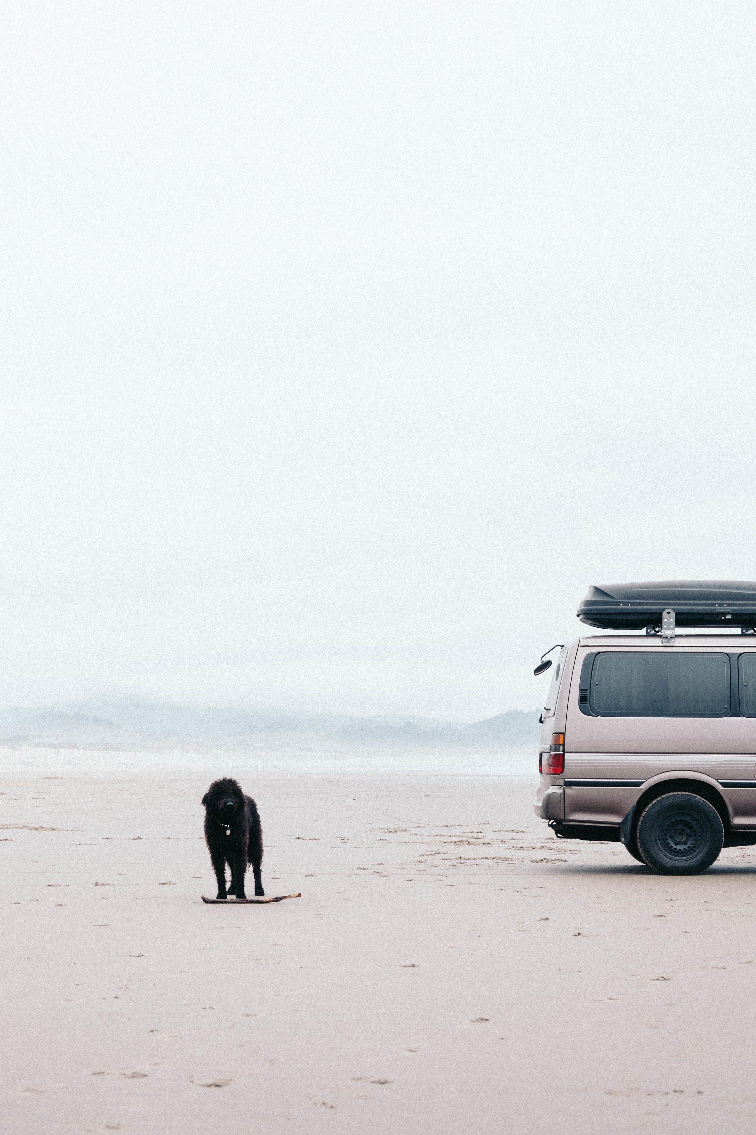 Oregon11.jpg