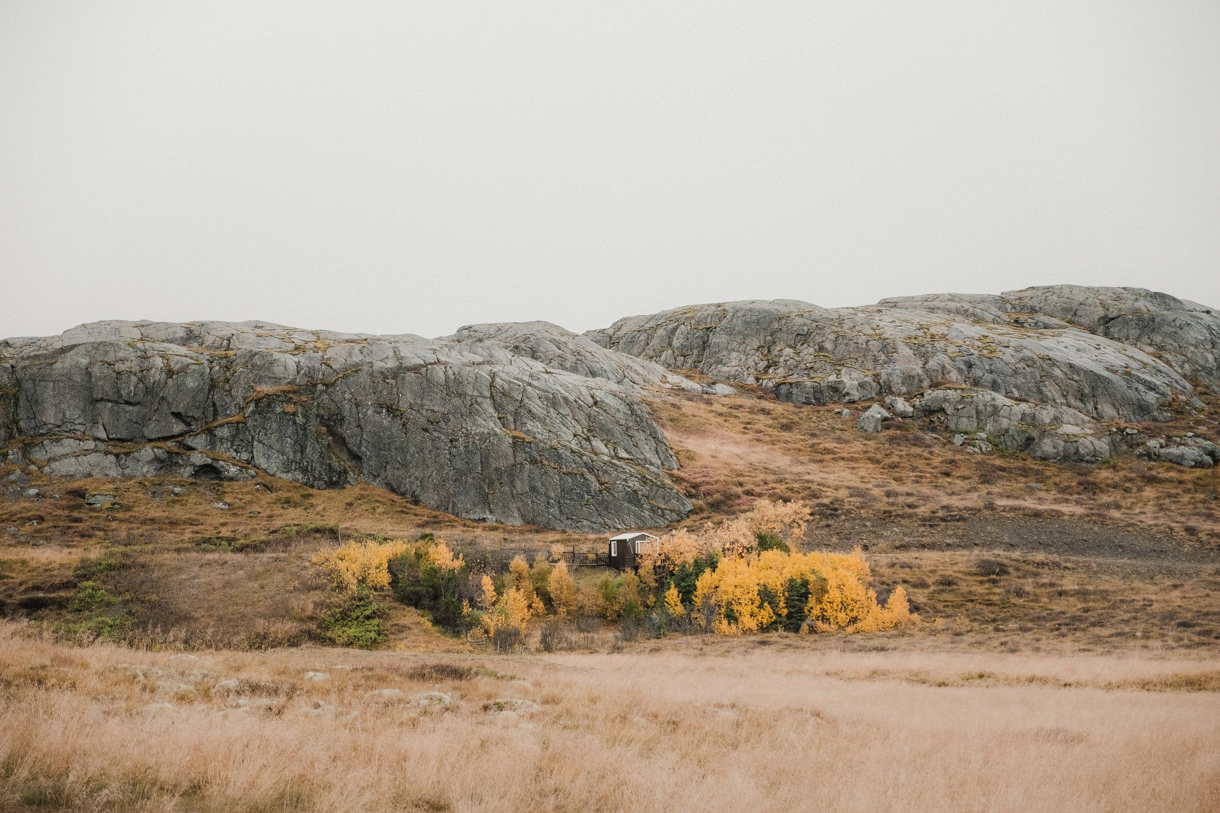Northern-Iceland-6.jpg