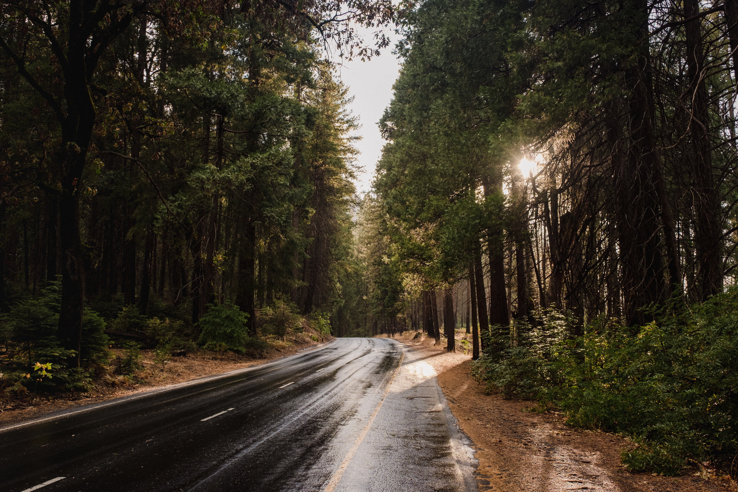 Southside Drive, Yosemite National Park