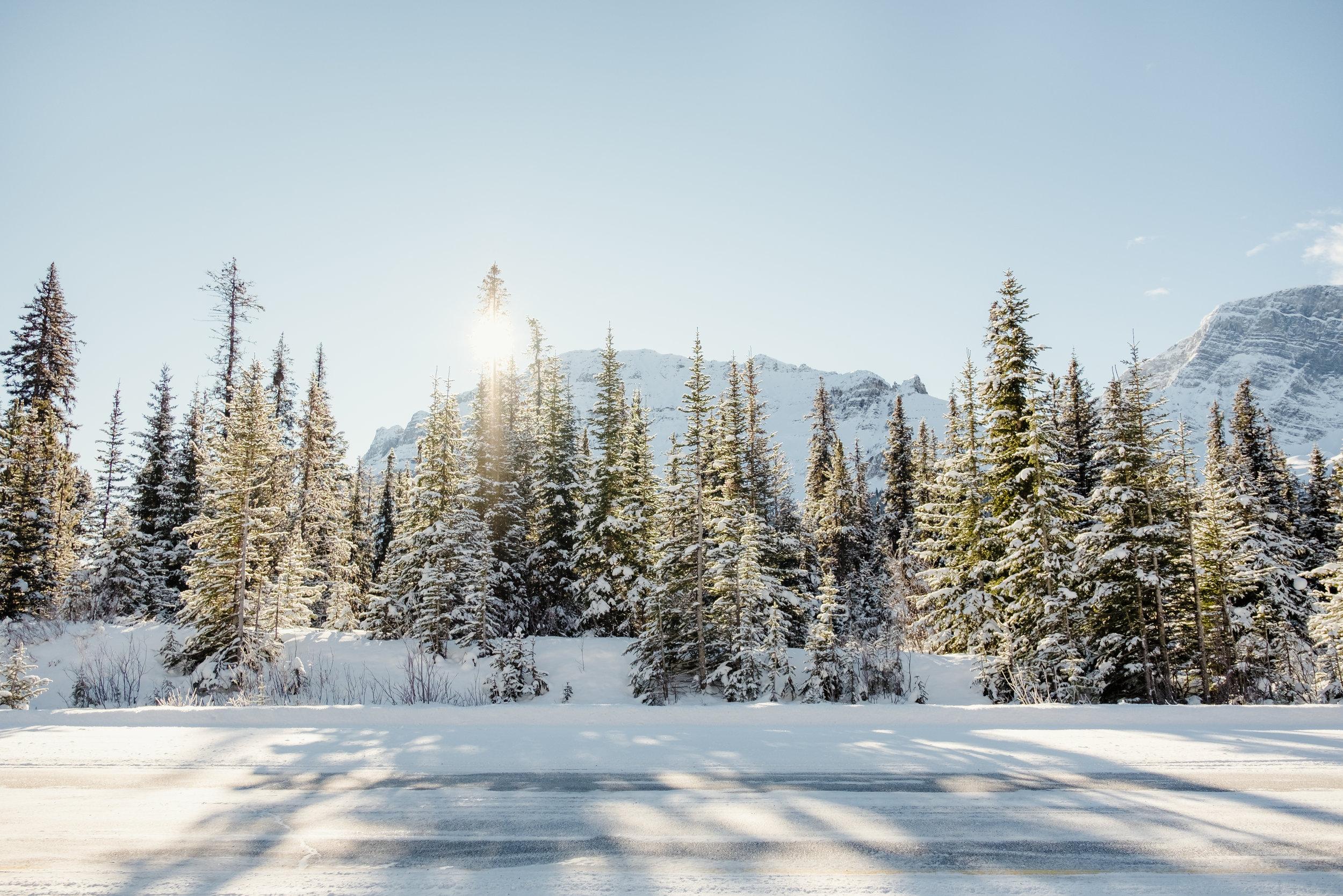 Banff_National_Park6.jpg
