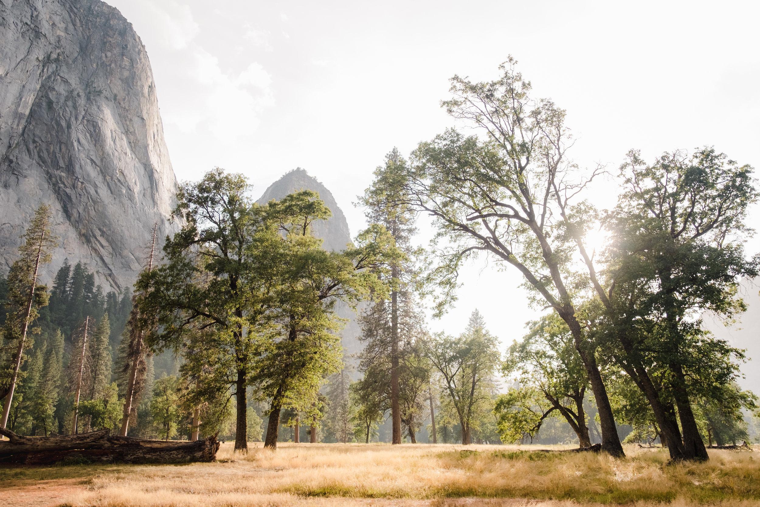 Yosemite_National_Park2.jpg