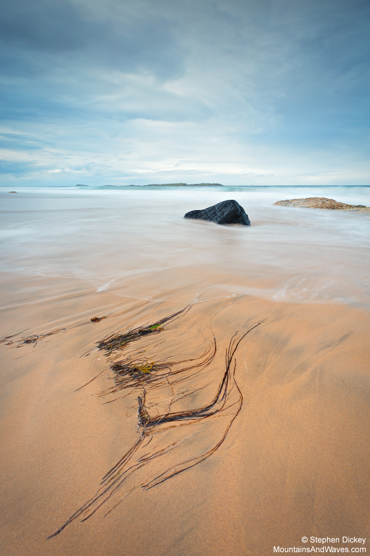 Whiterocks-Beach-Seaweed-Northern-Ireland-Landscape-Photography.jpg