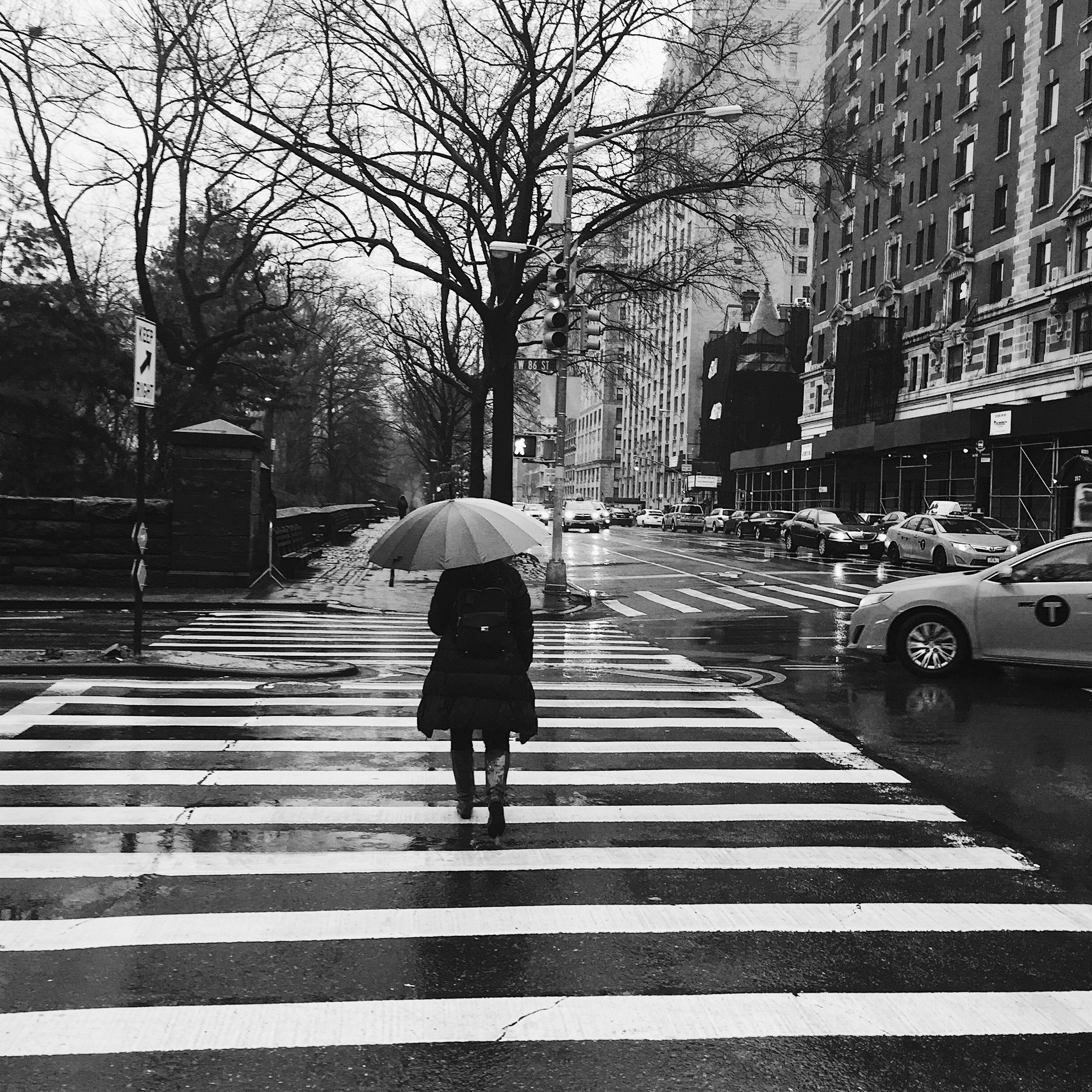 Rainy morning. New York, New York.