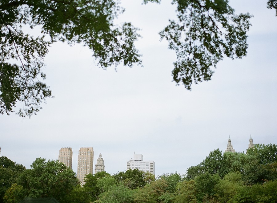 Central_Park_Engagement_MJ_01.jpg
